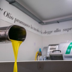 Production of high quality extra virgin olive oil from Puglia