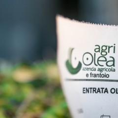AgriOlea Farm and Oil Mill